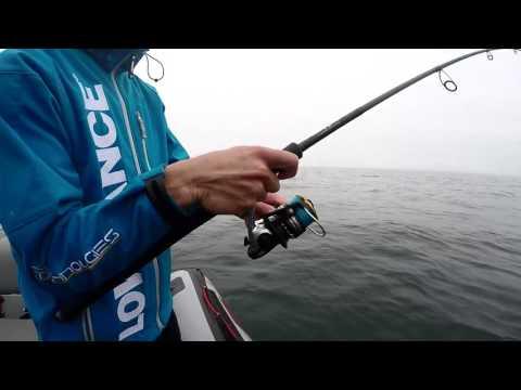 Pêche du lieu en Bretagne