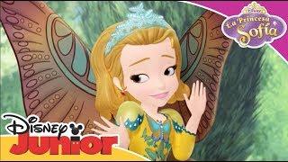 La Princesa Sofía: Momentos Especiales - Princesa Mariposa | Disney Junior Oficial