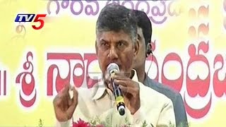CM Chandrababu Speaks At Neeru-Pragathi Programme | Vizianagaram | TV5 News