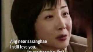 Winter Sonata My Memory lyrics and english translation2.flv