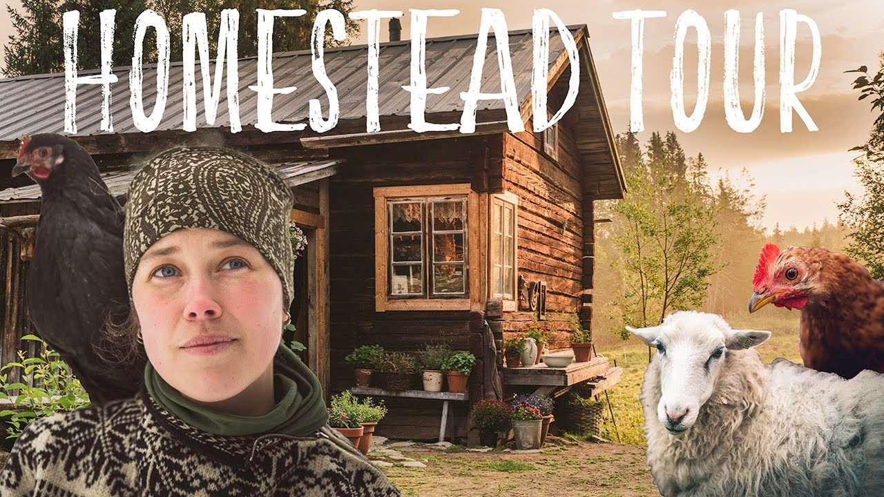 Couple Living alone in the Swedish wilderness