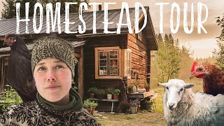 Off Grid Homestead Tour | Couple lives deep in the forests of Sweden