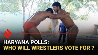 Haryana Elections 2019: What wrestlers want from politicians