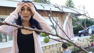 Էշ էշ Խոստումներ - Քարը Վտանգավոր ա - Heghineh Vlog 528 - Mayrik by Heghineh