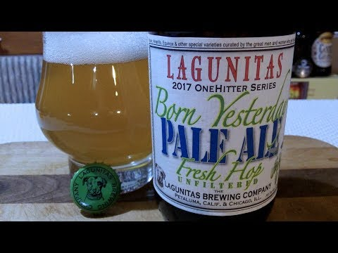 Lagunitas Born Yesterday Pale Ale �✩ (7.2% ABV) DJs BrewTube Beer Review #1082