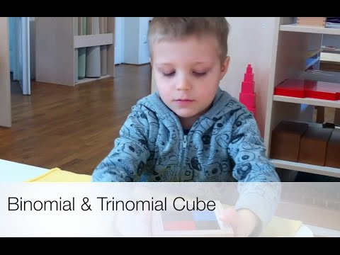 Binomial & Trinomial Cube