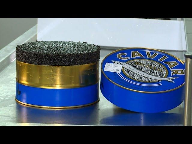 Saveur de réveillon : le caviar, une réussite girondine