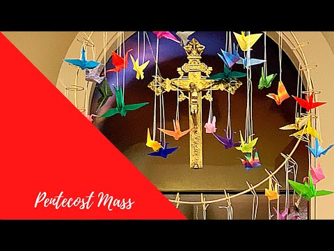 Our Lady of the Assumption Live Stream