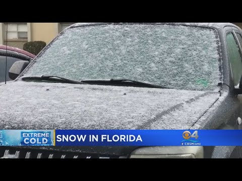 Snow Fall Sends Shivers Through Tallahassee