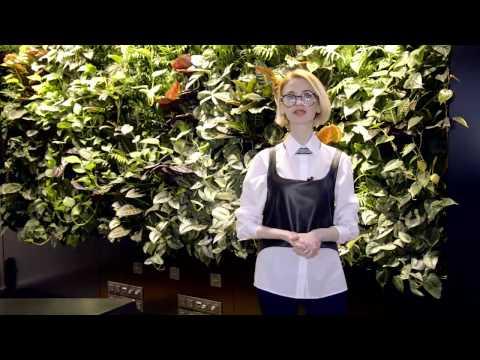 Ritto Giardino - Роскошные вертикальные сады