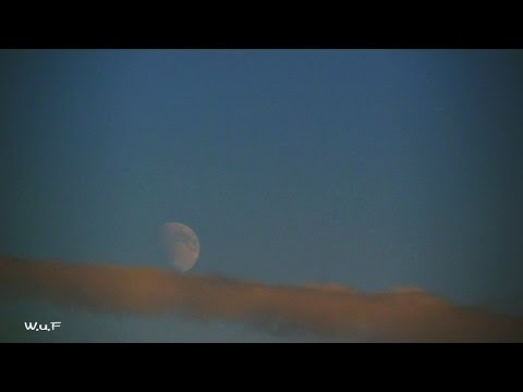 The Moon Planet Venus Timelapse The Netherlands