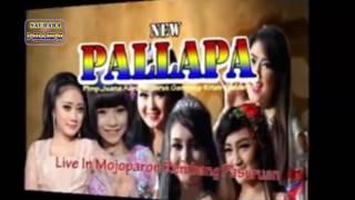 (Full Album) New Pallapa 2017 Terbaru Rembang Pasuruan Live Mojoparon