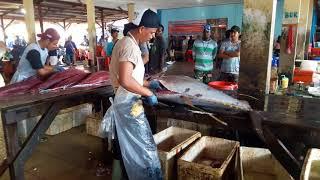#tunafish #ikantuna                                                Tuna master from Papua(INDONESIA)