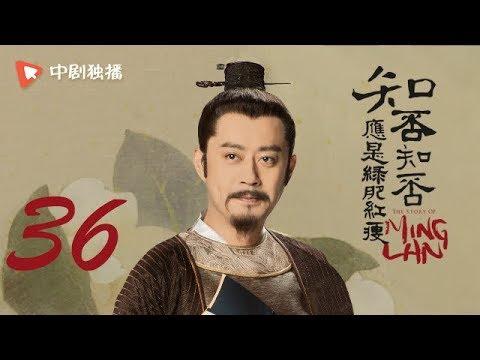 知否知否应是绿肥红瘦【未删减】36(赵丽颖、冯绍峰、朱一龙 领衔主演)