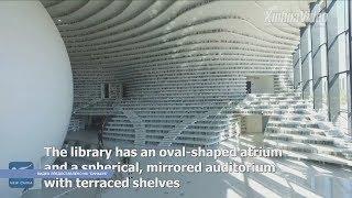Удивительный Китай. Библиотека Биньхай, шоу дронов и вишнёвый сад в цвету
