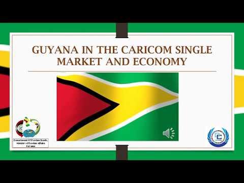 GUYANA IN THE CARICOM SINGLE MARKET AND ECONOMY: FREE MOVEMENT TRAVEL