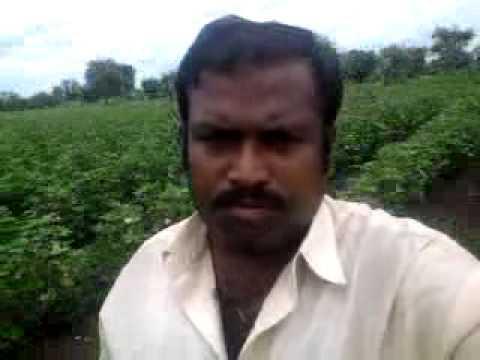 Andresh lalzare, at chapadgaon, tq ghansavangl