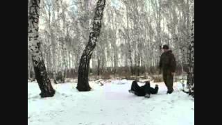 Бесконтактный бой , Драбинястый Владимир, boi prouspeh1]  02.09.2013