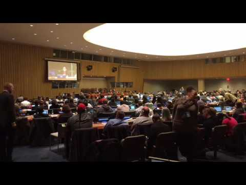 The UN Permanent Forum On Indigenous Issues
