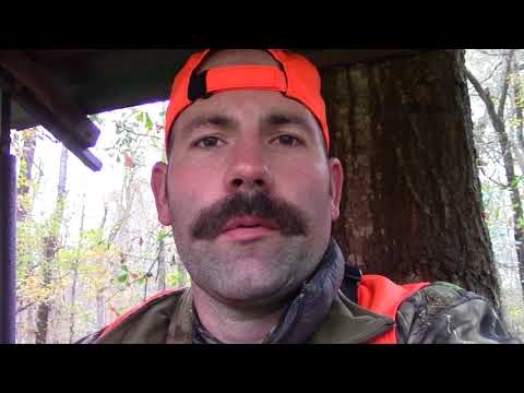 2017 Arkansas Deer Hunt -  Ruger Super Redhawk .44
