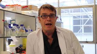 Professor Robin Williams discusses new research into therapeutic effects of Curcumin