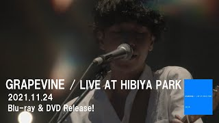 GRAPEVINE - LIVE AT HIBIYA PARK(Official Trailer2)