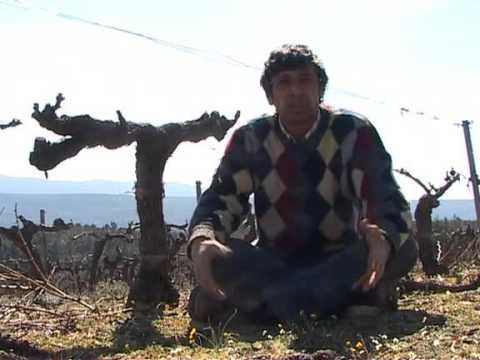 Pierre Rabhi   Philosophie   A la découverte de l'agriculture biologique   2009