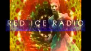 2/5 George Kavassilas on Red Ice Radio 1/27/2011 - Ascension and Beyond