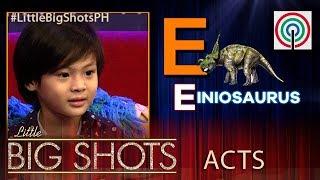 Little Big Shots Philippines: Noah   5-year-old Heartthrob