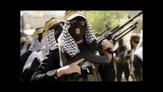 Вторая ливанская война 2006 год. Лекция Игаля Левина для Центра изучения повстанческих движений