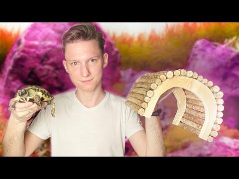 Домик для сухопутной черепахи фото своими руками