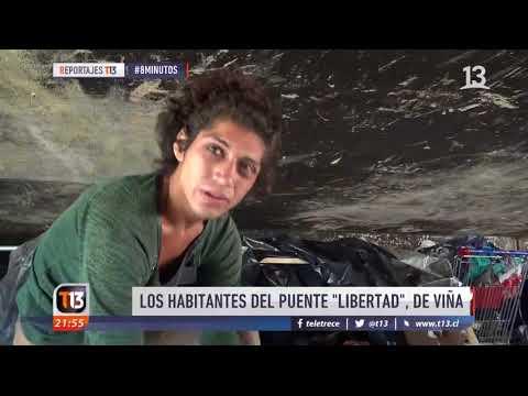 Vida bajo el puente Libertad de Viña del Mar - #8Minutos