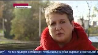 Резкое подорожание яиц в России   Новости 2013