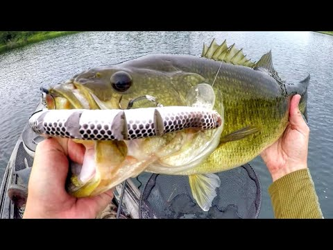 Fishing A Rattlesnake Lure For Big Bass!