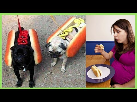 Can Pregnant Women eat Hot Dogs?