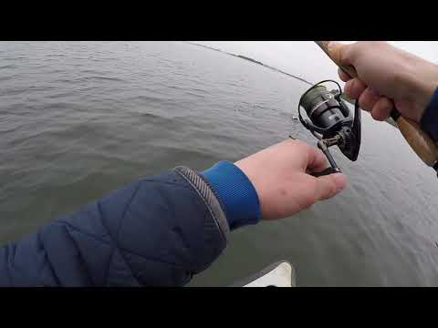 Hunningfield Reservoir / Trout Fishing