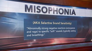 Misophonia Explained - Do You Suffer From It?