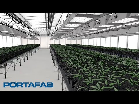 Cultivation Rooms for the Cannabis Industry