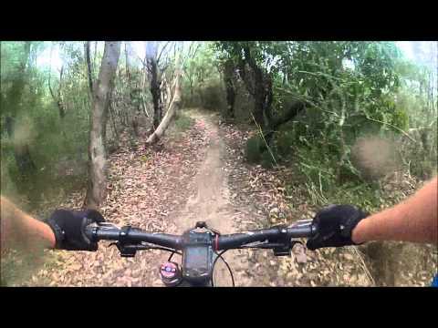 Manly Dam Mountain Bike Trail - Golf Course Singletrack Rider POV