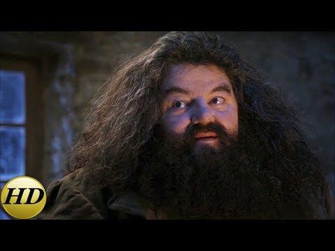 Хагрид приходит за Гарри в день рождения. Гарри Поттер и философский камень.