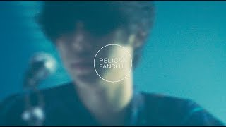 PELICAN FANCLUB - ガガ Director:Nao Watanabe Sound Engineering : F...