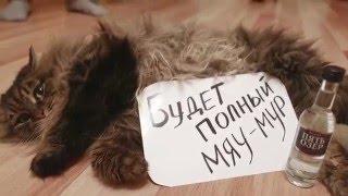 самое смешное видеоприглашение на свадьбу Тышкуновых