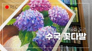 [꽃시리즈] 6편/수국…