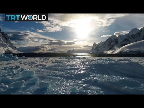 Turkey's Antarctic Mission: Polar expedition studies climate change effects