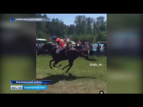 В Бакалинском районе прокомментировали инцидент с влетевшей в толпу лошадью