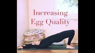 YOGA for FERTILITY FULL LENGTH CLASS Increasing Egg Quality with YogaYin