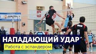 Нападающий удар в волейболе. Упражнения с эспандером. Советы от RUSVolley(Мы показываем как правильно нужно разминаться перед тренировкой с эспандером с акцентом на нападающий..., 2016-03-14T11:12:03.000Z)