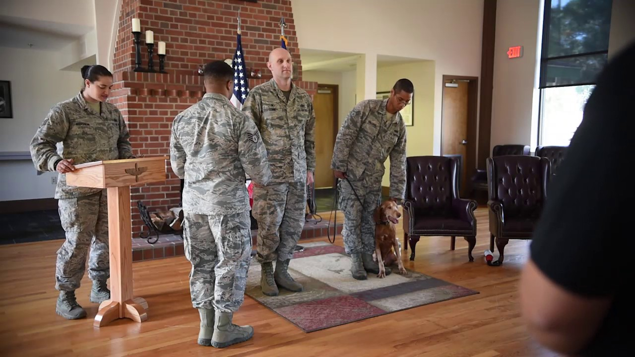 Military Working Dog Retirement Ceremony Air Force Security Forces