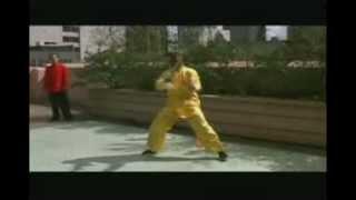 Wing Chun and Shaolin Masters--- William Cheung/RahSun/Wang Bo