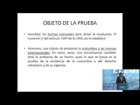 ii-curso-de-derecho-administrativo:-procedimientos-administrativos-07
